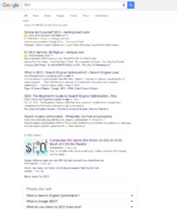 Search engine results page(SERP) - SEO Google